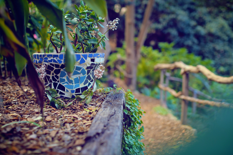 Wendy's Secret Garden 31