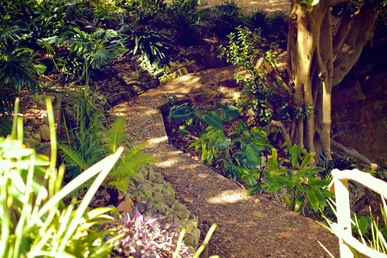 Wendy's Secret Garden 34